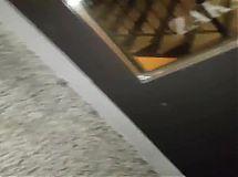 publiczne nagrywanie suczki